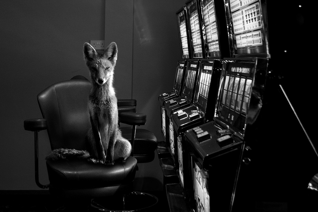 © Jason McGroarty: Totem / MonoVisions Photography Awards 2018 Honourable Mention
