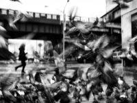 "Phil Penman: ""Street"" on Kickstarter"