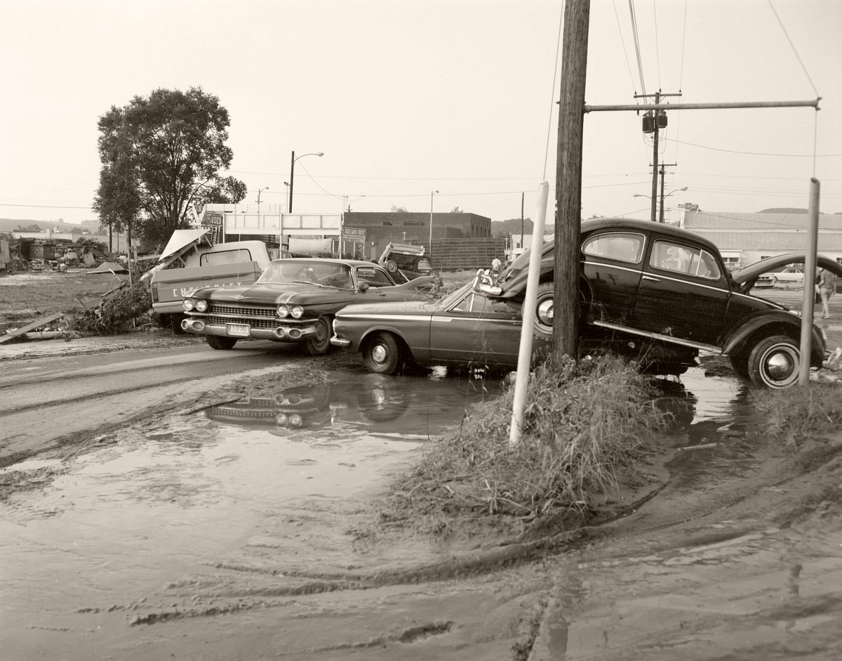 A driver naviagates through vehicles damaged during Hurricane Camille on Sycamore Avenue. Located just off Rt. 501 in Buena Vista, Rockbridge County. No. 69-1179, Virginia Governor's Negative Collection, Library of Virginia.
