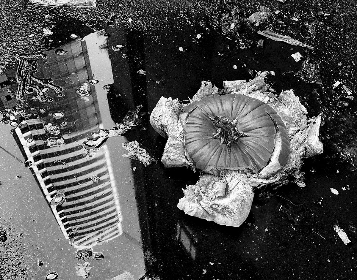 © Steve Geer: Discarded