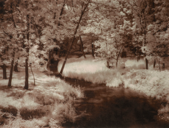 Diane Levell (b.1946), Tinicum Canal Path, 2018, archival print on Kinwashi paper. 14 ¼ x 18 3/4 inches. Courtesy of the artist. Diane Levell (b.1946), The Overgrown Quarry, 2016, archival print on Kinwashi paper. 14 ¼ x 18 3/4 inches. Courtesy of the artist. Diane Levell (b.1946), Lush Grass, 2017, archival print on Kinwashi paper. 14 ¼ x 18 3/4 inches. Courtesy of the artist.