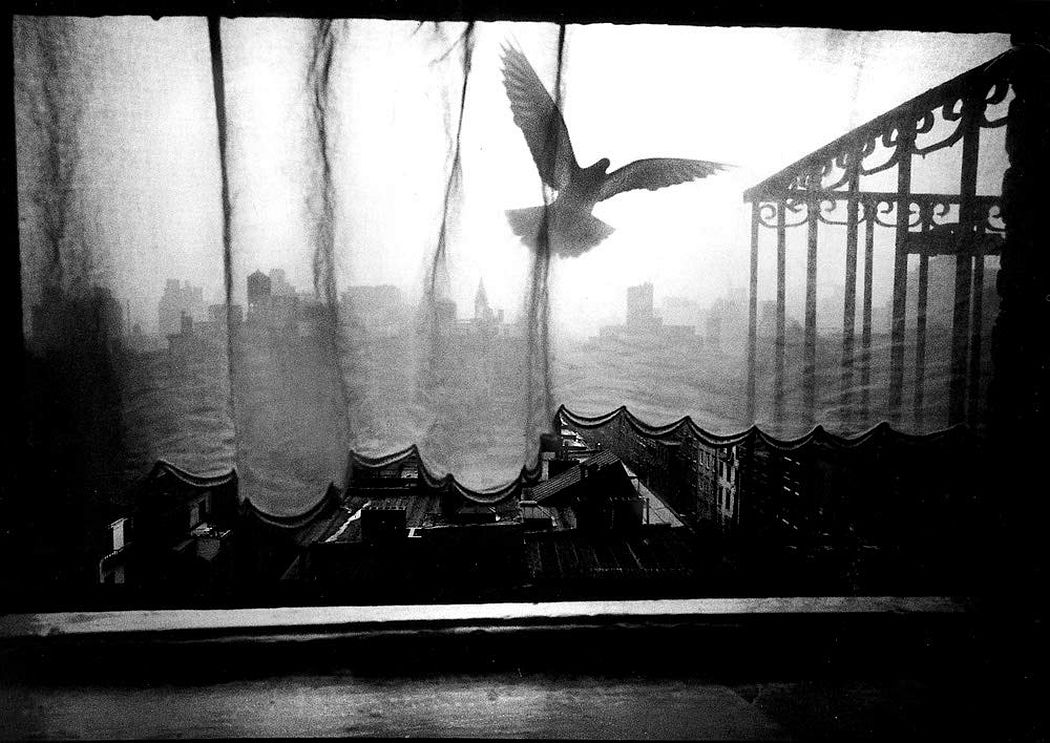 © Ken Van Sickle: Photography