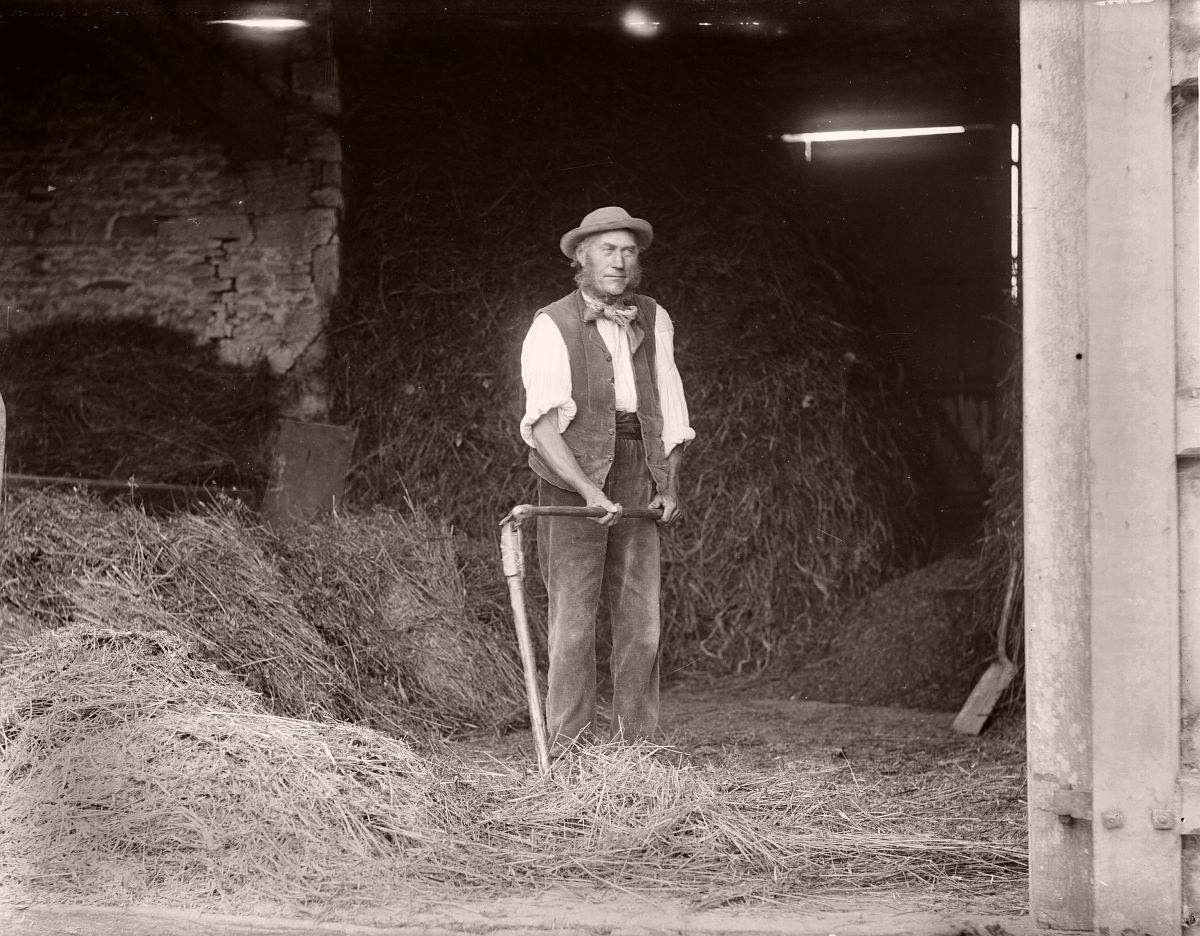 Threshing, Great Barrington Barn 1895
