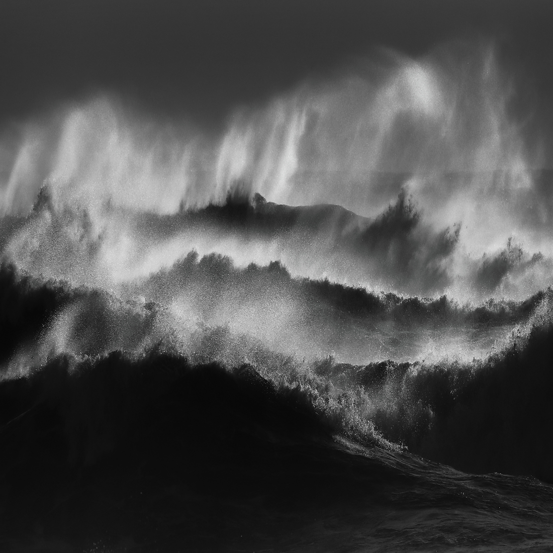 1ST PLACE – Black & White Nature and Wildlife SerieS of the Year 2019, Ocean – Romain Tornay