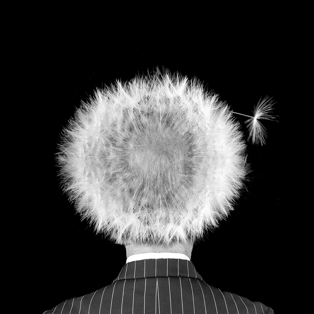 1ST PLACE – Black & White Conceptual PHOTO of the Year 2019, hairloss – Michael Knudsen