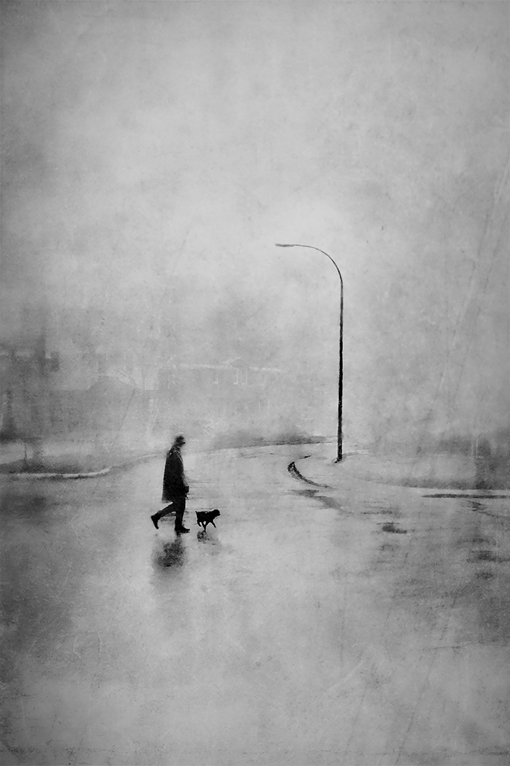 1ST PLACE – Black & White Fine Art PHOTO of the Year 2019, Walking Brutus – Daniel Castonguay
