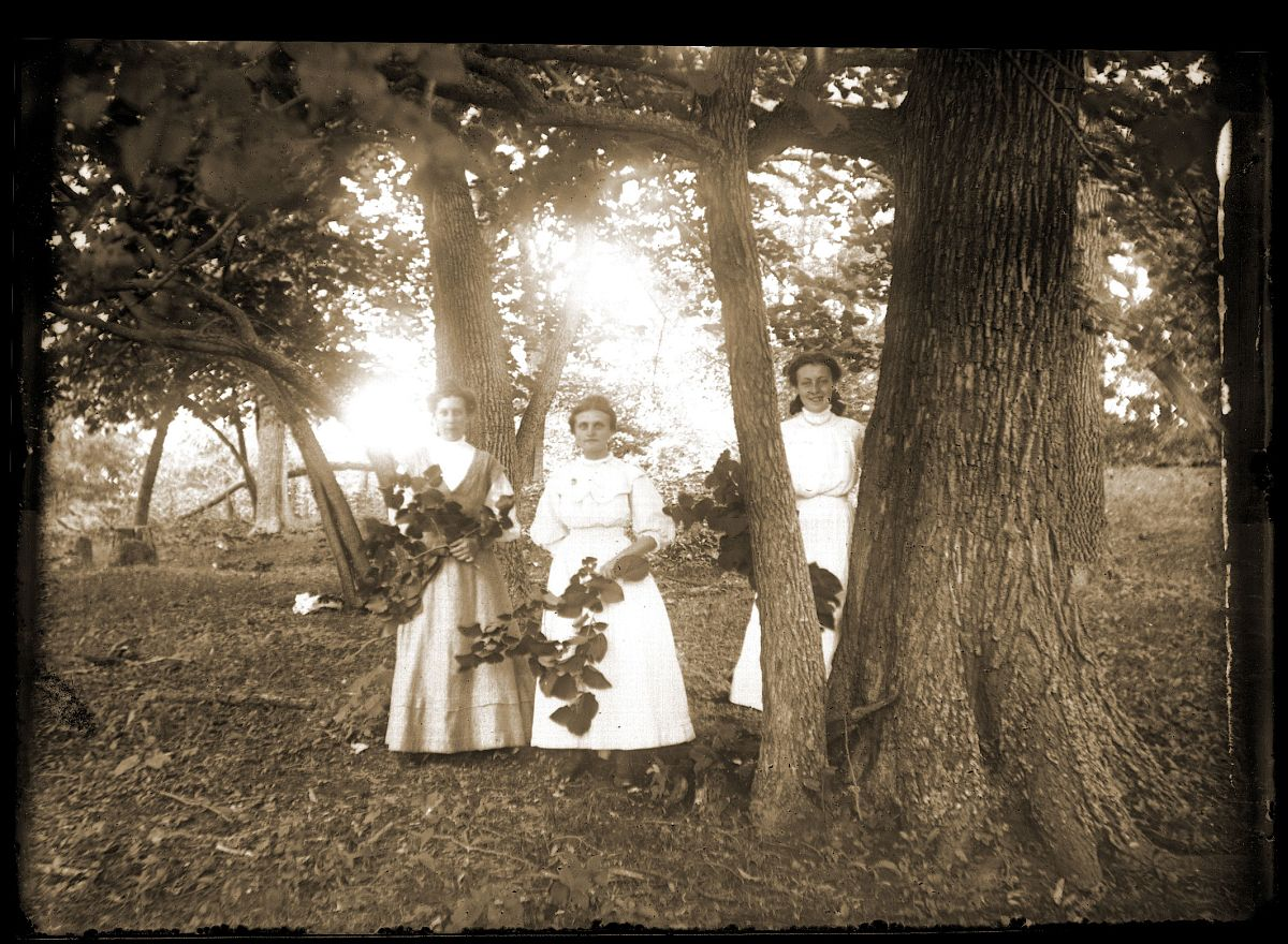 A group of women in a grove of trees
