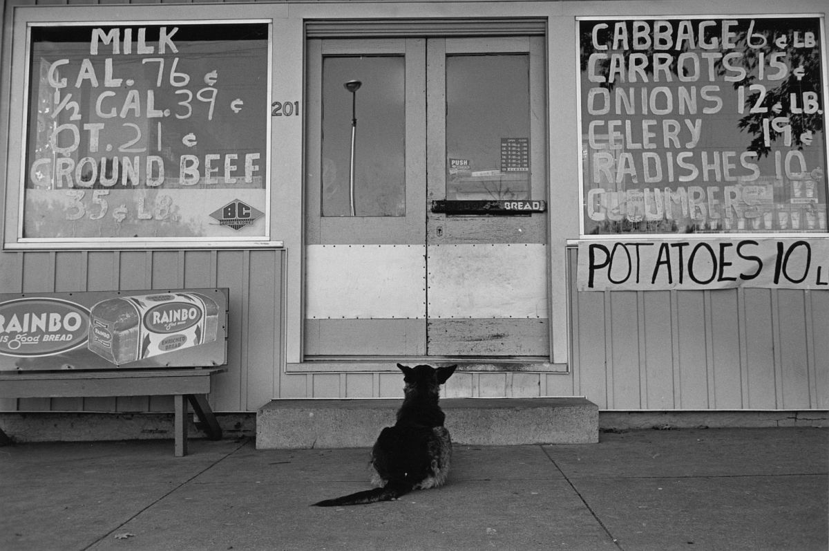 Lee Friedlander, Kentucky, 1965