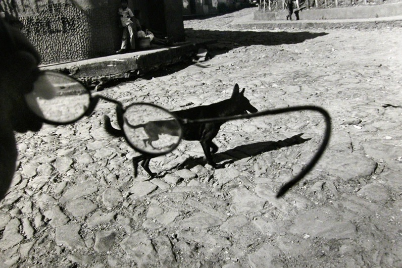 Larry Towell b. 1953 Perquín, Morazán, El Salvador [dog/glasses], 1991