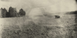 Sally Mann: Remembered Light & Landscapes