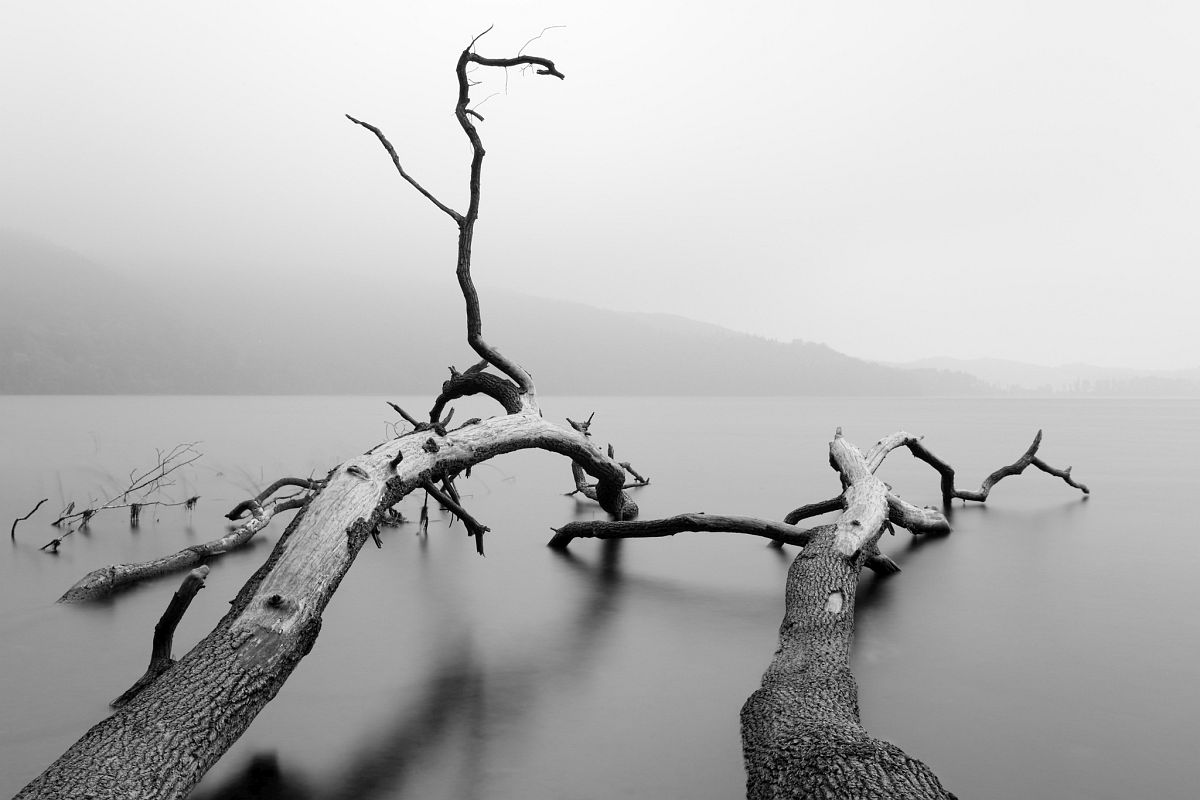 © Christian Zieg