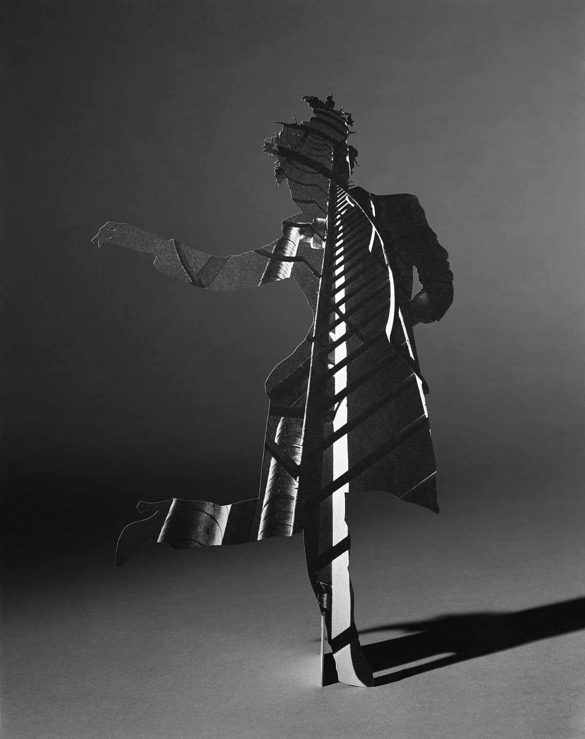 Matt Lipps Ladder, 2019