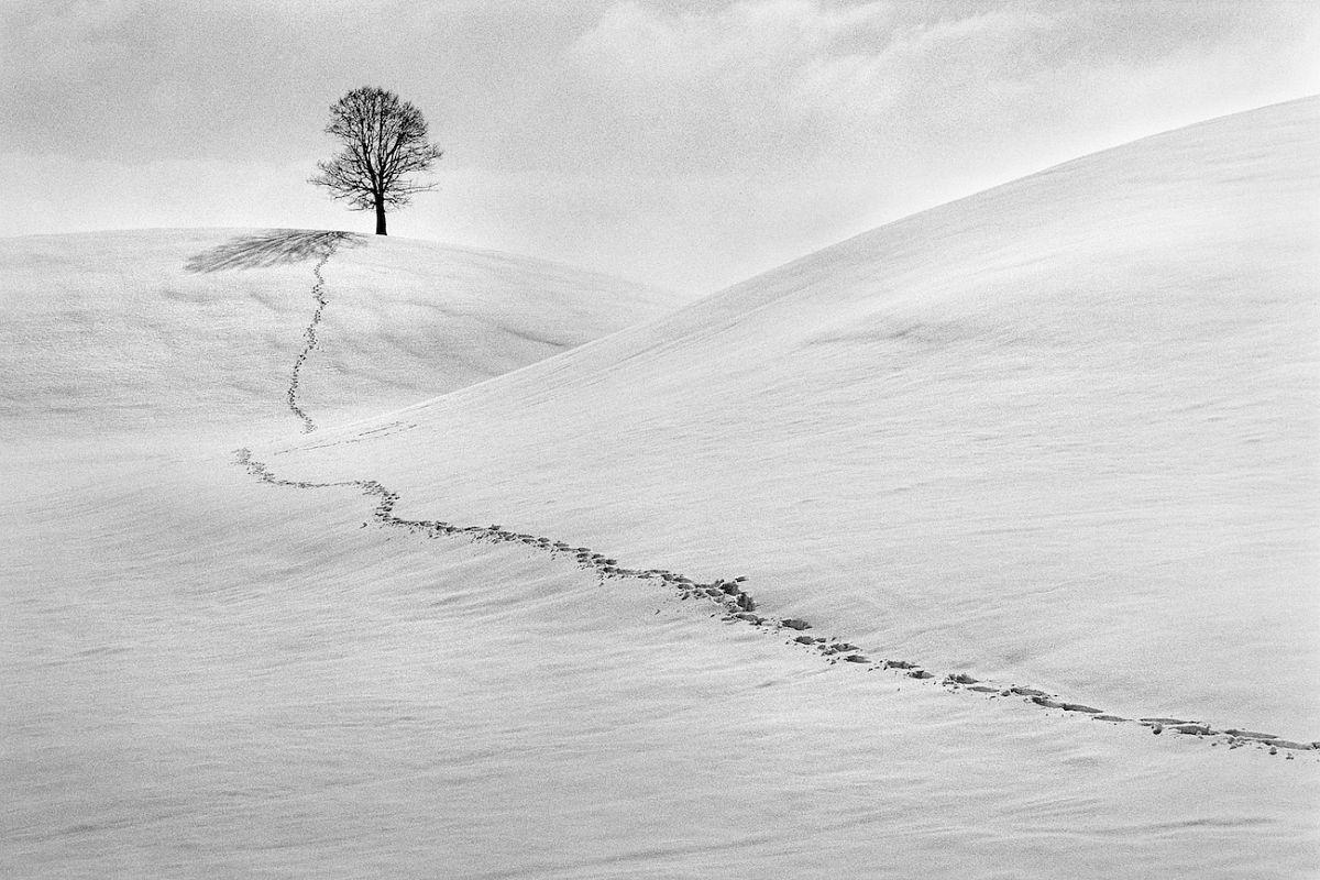 René Groebli: Schneespur (Snow traces), 56 x 85 cm, Ed. 7