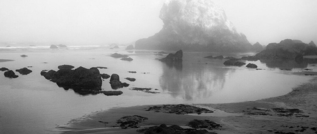Jasmine Swope: Our Ocean's Edge