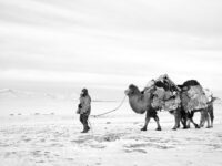 Kevin Shi: Five Years Apart – A Boy's Grow Up in Western Mongolia