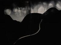 Nadezda Nikolova Kratzer – Elemental Forms, Landscape