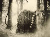 Galerie Karsten Greve: Sally Mann